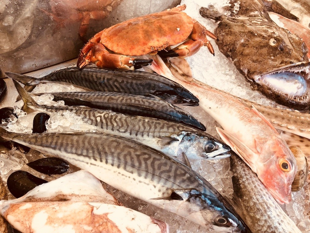 Fishermen's training and certification regulations to be reviewed