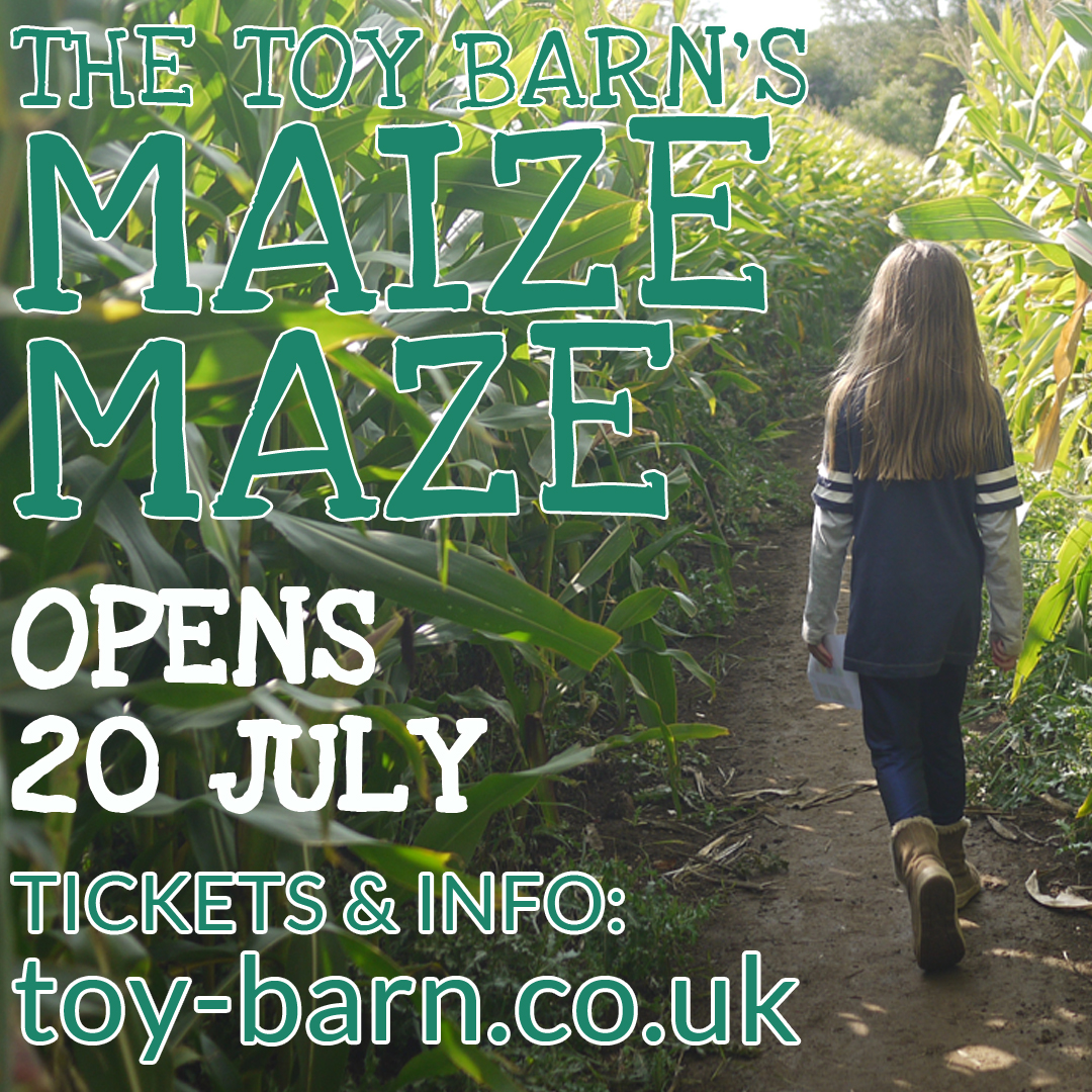 Maize Maze at The Toy Barn