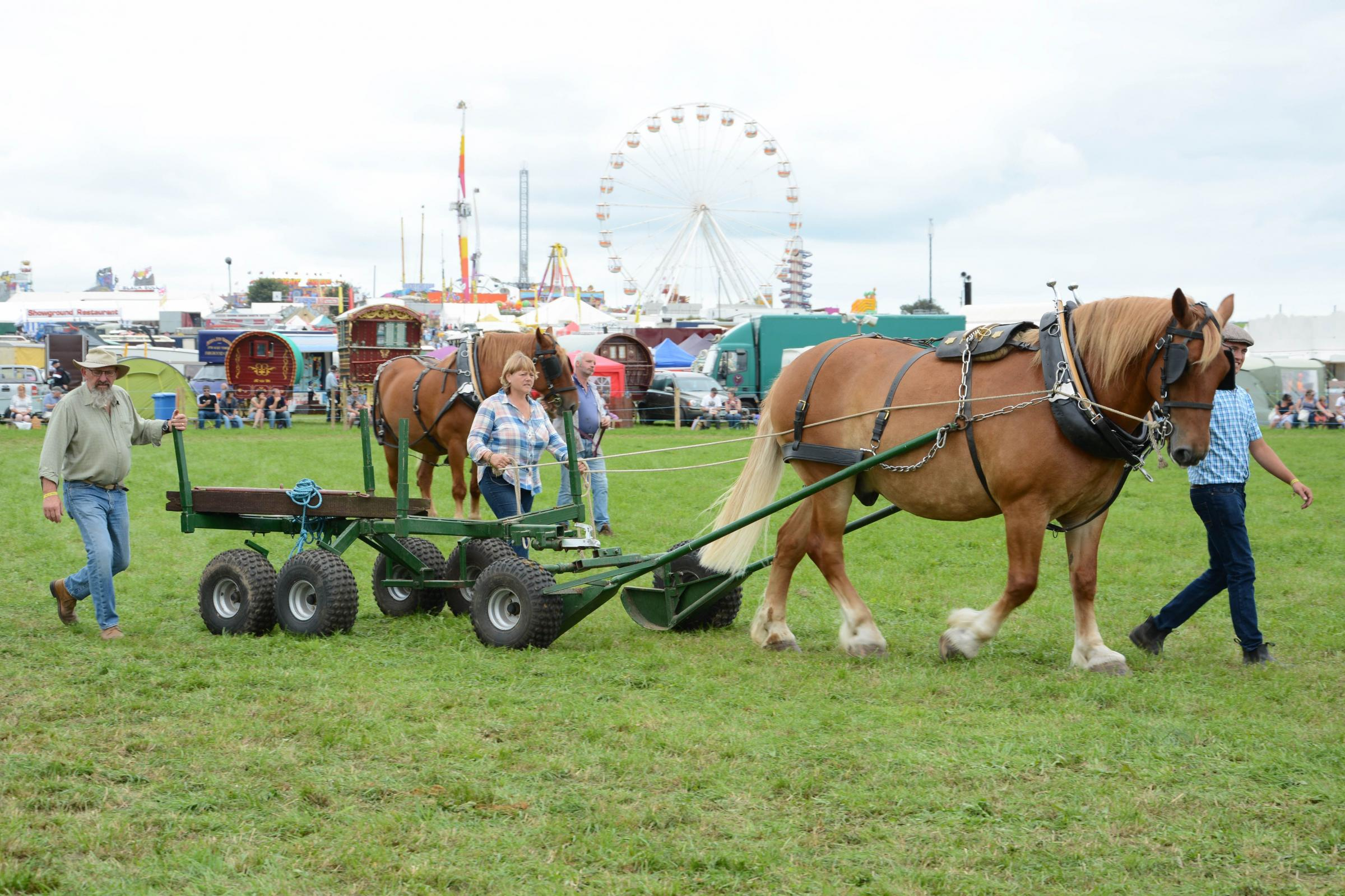 All you need to know about this year's Great Dorset Steam Fair