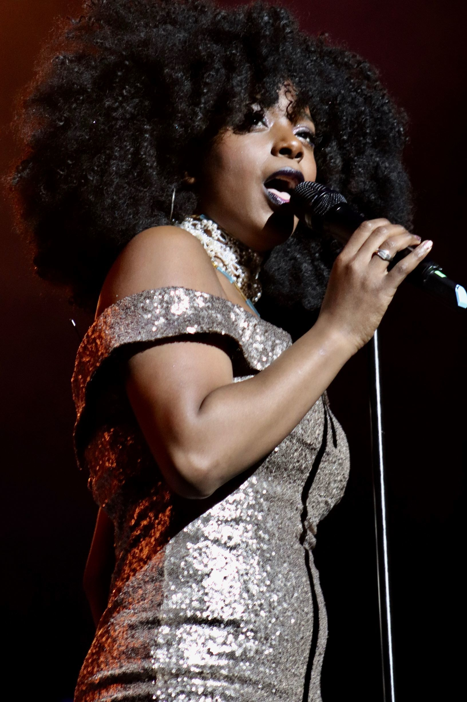 Four top singers to pay tribute to Queen of Soul