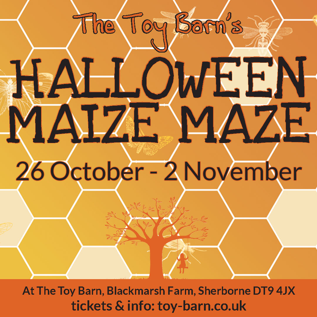 Halloween Maize Maze at The Toy Barn