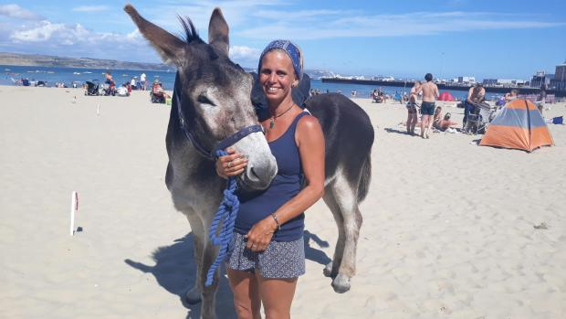Dorset Echo: Melanie Rush said her famous beach donkeys are 'competing with each other' to give rides to children on the beach Picture: Ellie Maslin