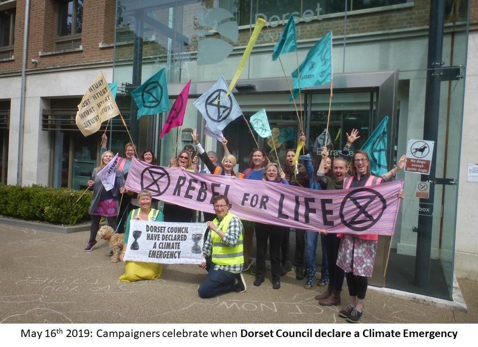Dorset Council unveils its environmental and ecological emergency plan