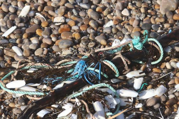 Dorset Echo: Rubbish washed ashore on Chesil Beach Picture: Dave Taylor