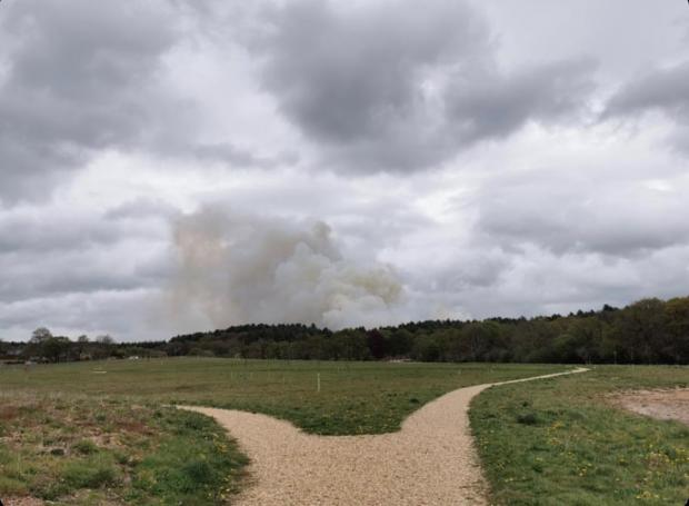 Dorset Echo: Heath fires break out in Verwood. Picture: Tom Knight