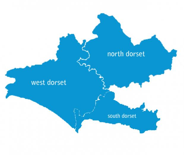A SEA OF BLUE: The local constituency outcome