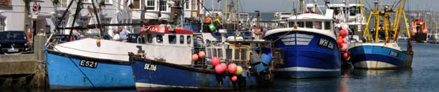Dorset Echo: Weymouth Harbour
