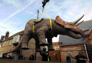 The Dinosaur Museum in Dorchester sends its triceratops away for a makeover