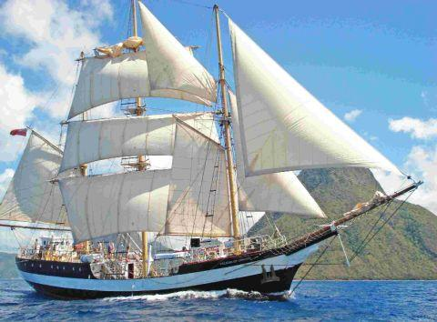 ANTARCTIC ROLE:  Expedition leader Tim Jarvis and the tall ship Pelican