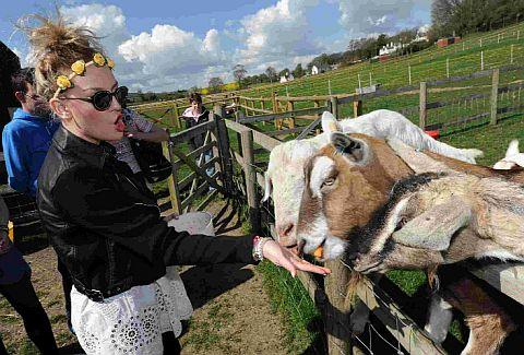 Perrie Edwards visits Cowden Farm in Charminster