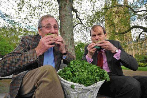 Charles Barter and the 11th Earl of Sandwich John Montagu each eat a watercress, horseradish and roast beef sandwich