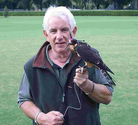 DISPLAY: Falconry expert Bob Dalton