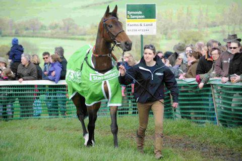 CHAMPION HURDLE BID: Rock On Ruby