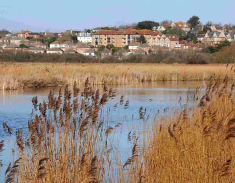 FUNDING BOOST: Radipole Lake
