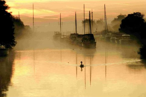 SWAN LAKE: An autumnal sunrise over the River Frome at Wareham captured by photographer Patsy Glazier