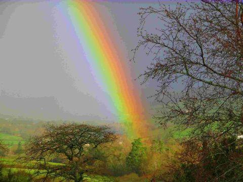 STUNNING: Rainbow over Charmouth taken by Peter Crowter