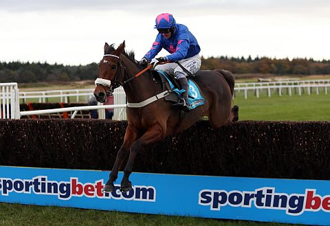 SPRING-HEELED: Cue Card