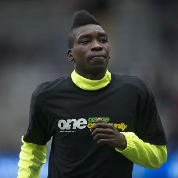 Sammy Ameobi, pictured, has earned high praise from his manager Alan Pardew
