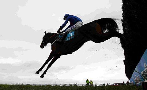 RIGHT ON CUE: Joe Tizzard on board Cue Card at Exeter, on their way to victory in the sportingbet Haldon Gold Cup