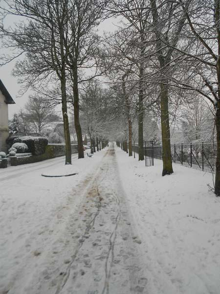West Walks in snowy Dorchester