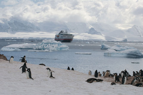 An expedition to Antarctica