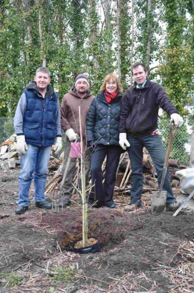 GROWING SUCCESS: Staff from Dorchester's Waitrose store help plant trees at the town's community orchard