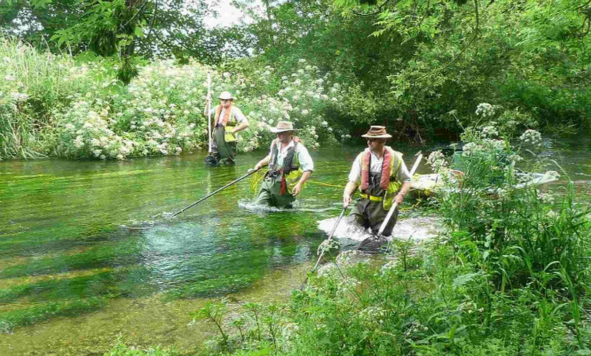 Fishing on the River Frome