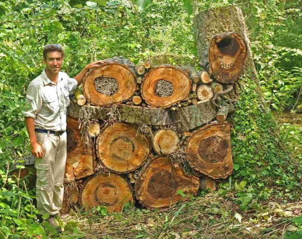 Charlie Wheeler with the bug hotel