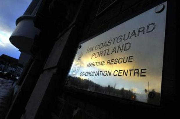 Dog rescued after falling into quarry
