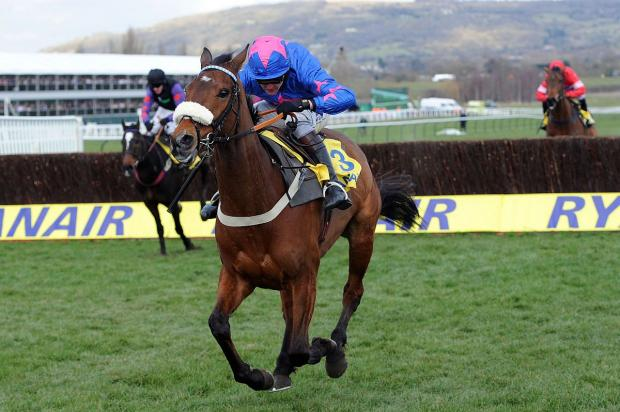 TARGETS; Cue Card