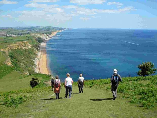 SCENIC:  The South West Coast Path at Thorncombe Beacon