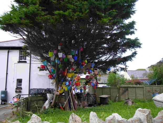 GONE: The bucket tree. Picture by Emma Seymour