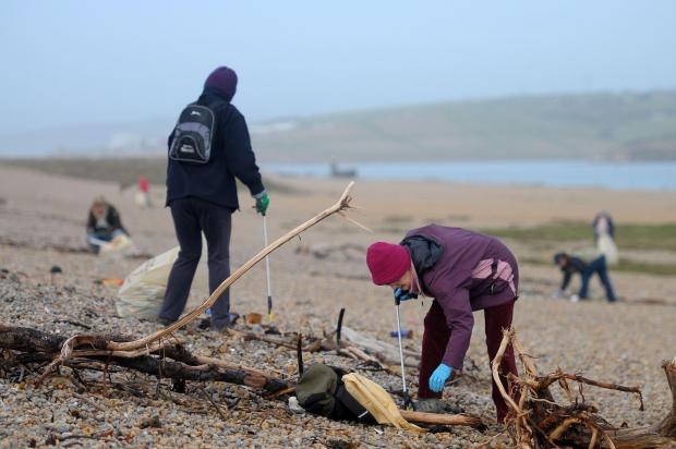 Volunteers clearing Chesil beach today