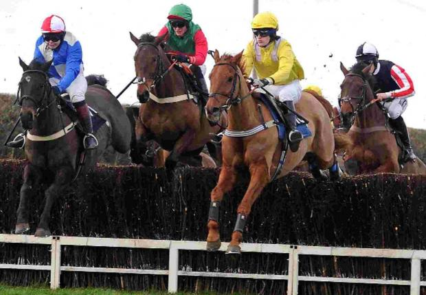 SAFELY OVER: Frontrunners in the Open Maiden Race