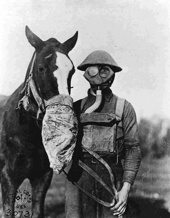 GAS ALERT: Gas masks for soldier and horse during the First World War