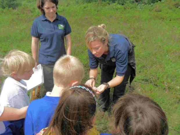 NATURE'S WAY: Nikki Hesketh-Roberts from Dorset Wildlife Trust with pupils from Upton Infant School