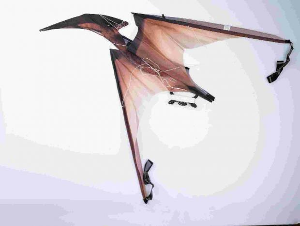 HIGH FLIER: The pterodactyl kite