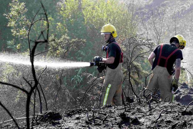 Volunteers sought to prevent heathland arson