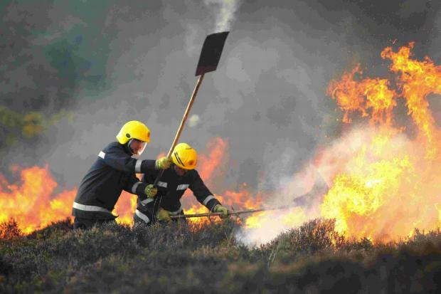 Dorset firefighters in action