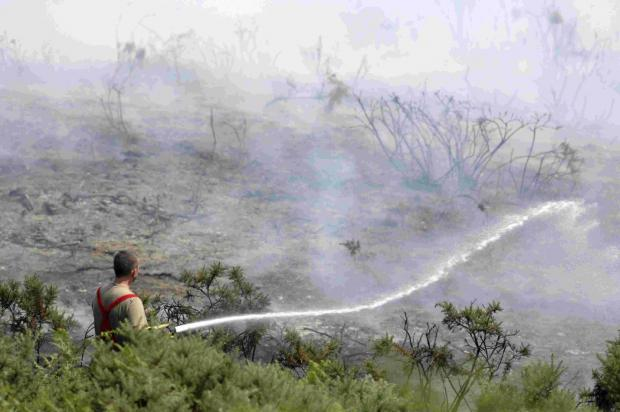 OPERATION HEATHLAND: Firefighters battle a heath fire at Winfrith