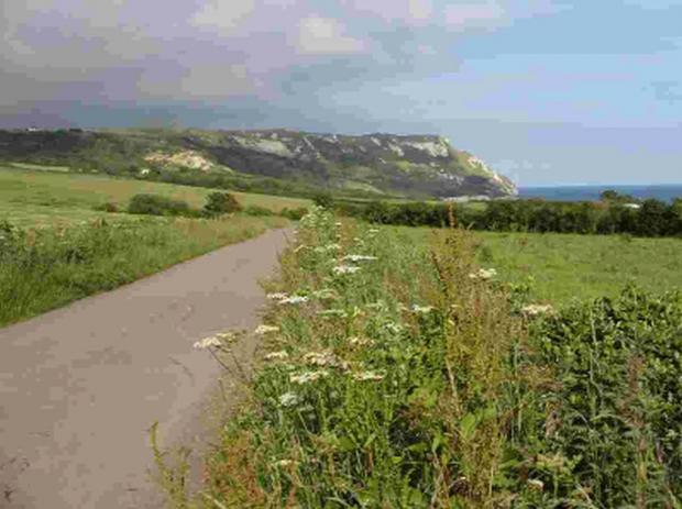 AUTHOR'S WALK: The walk to Ringstead Bay as described in Hardy's The Distracted Preacher