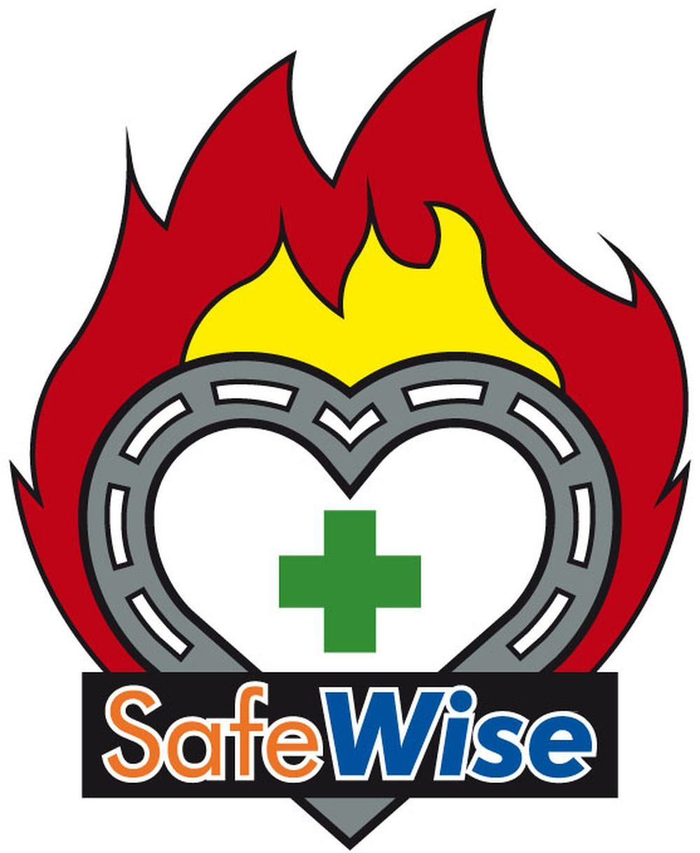 Safewise has been given a funding boost by the Big Lottery Fund