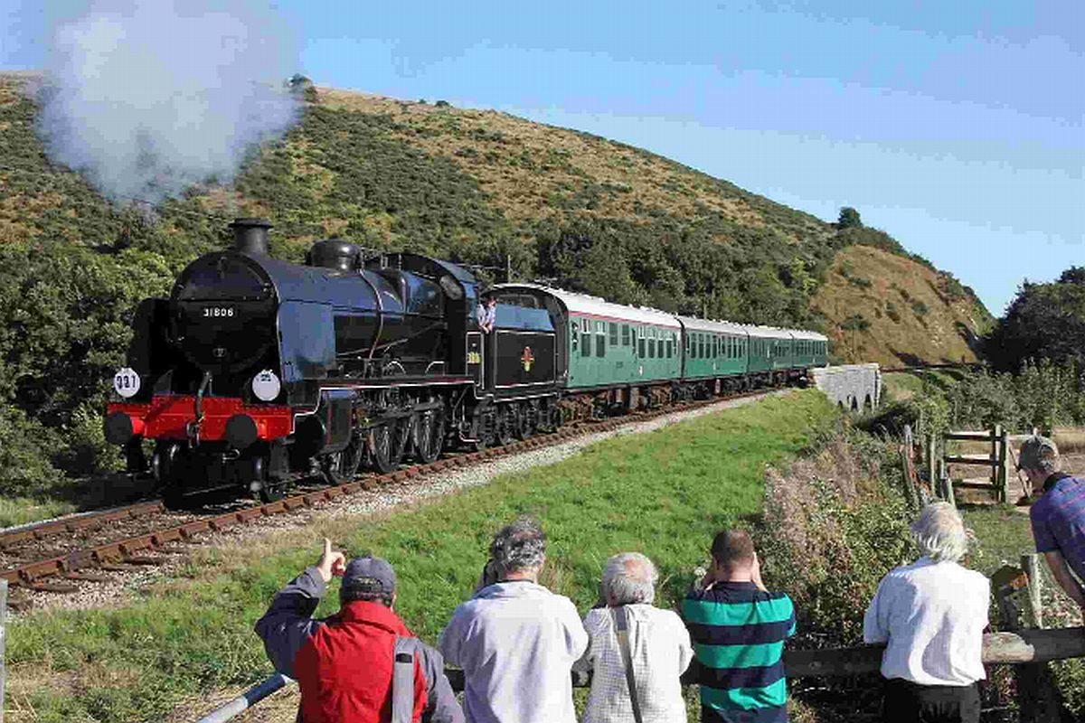 ON THE RIGHT TRACK: No. 31806 on the Swanage Railway