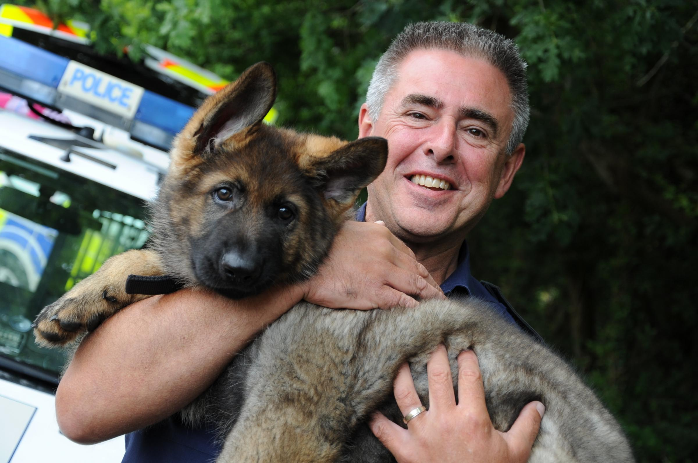 WITH VIDEO: Meet the latest Dorset Police recruit- 10-week-old Gus