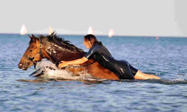 FUN: Katie Beat rides Stewie in the sea off Weymouth. Picture: DMS