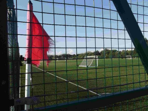 STRUCK OFF: The 3G pitch at Redlands