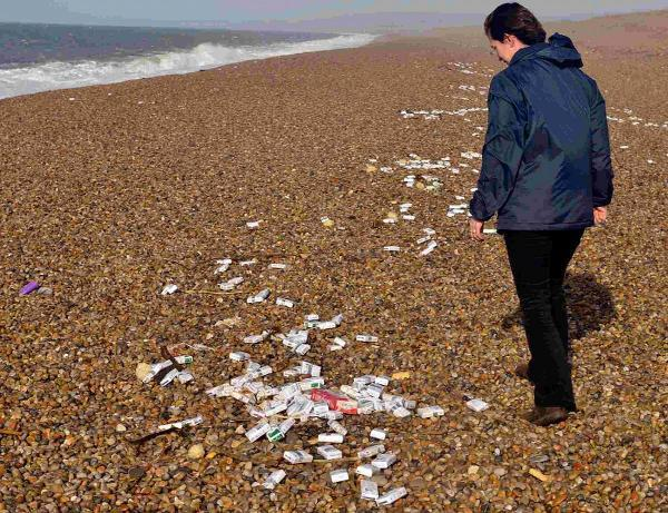 UNLAWFUL BOUNTY: Emily Brown from Dorset Wildlife Trust looks at the cigarette packets washed up on Chesil Beach