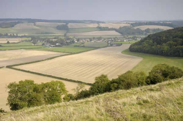 National Trust acquires Hambledon Hill