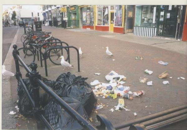 Litter harms town's image