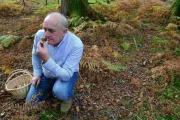A FUNGI: Alex Aitken senses a find